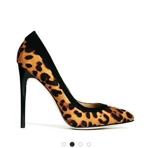 ASOS Shoes - Asos Leopard print shoes